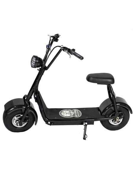 Citycoco Mini 1000W