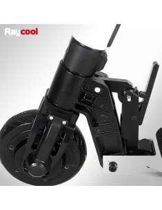 Patinete eléctrico 300W Raycool S01