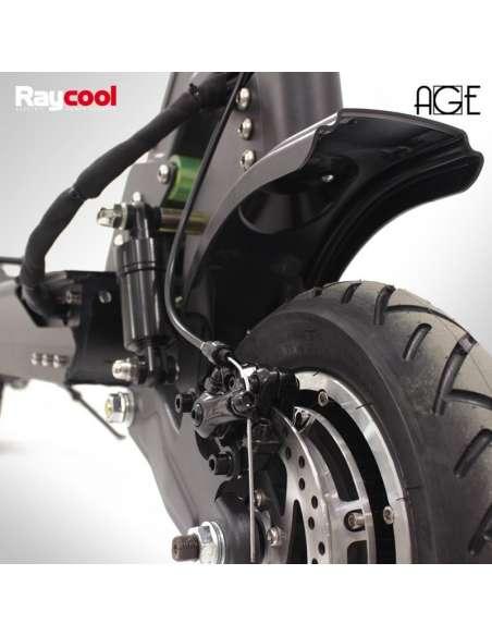 Patinete eléctrico Raycool AGE 2000W Dual